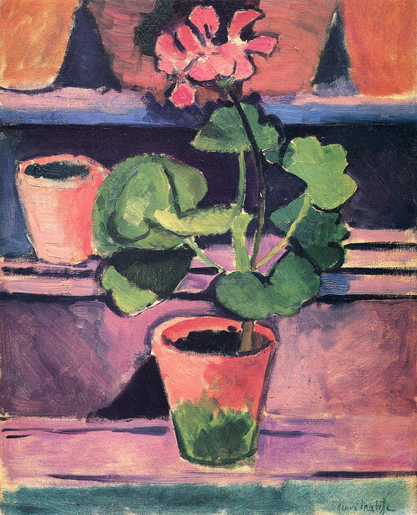 Henri Matisse - Pot of Geraniums 1912