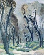 Avenue of Olive Trees 1952